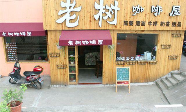 泰州老树咖啡屋仅售88元!