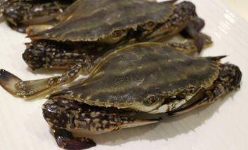 【沈阳】鱼头虾尾-美团