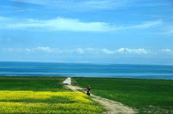【西宁出发】青海湖二郎剑景区、茶卡盐湖、坎布拉等纯玩3日跟团游*两湖两水+丹霞风情-美团