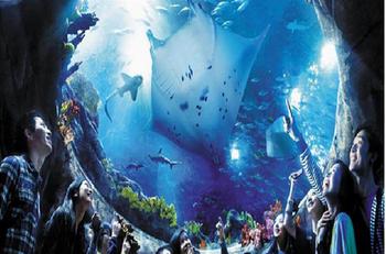 【桥西区】石家庄海悦天地海洋公园-美团
