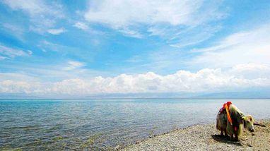 【西宁出发】青海湖二郎剑景区、金银滩原子城、青海湖等纯玩1日跟团游*赠赞普林卡和日月山-美团