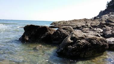 【大连出发】哈仙岛纯玩2日跟团游*哈仙岛休闲度假-美团