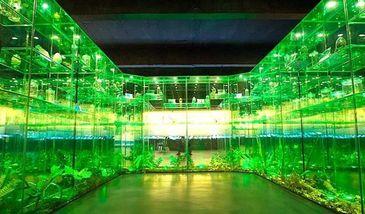 【开发区】中国虫草博物馆-美团