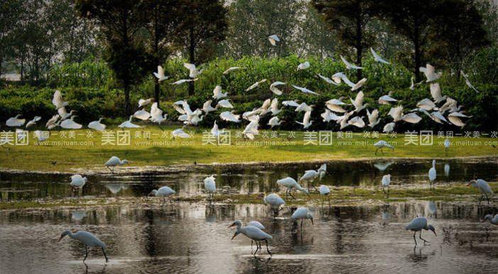 南海湾森林生态公园分享展示图片