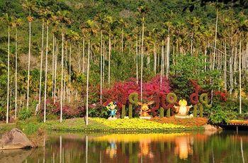 【呀诺达雨林文化旅游区】呀诺达雨林文化旅游区-美团