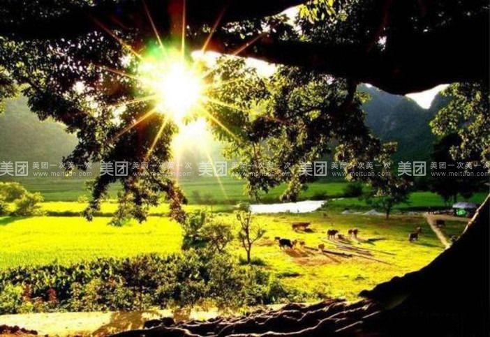 抚仙湖禄充风景区门票)