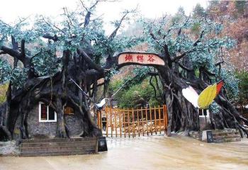 【藤县】梧州蝴蝶谷生态旅游度假区-美团