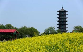 【沈阳出发】新民三农博览园纯玩1日跟团游*现代农业博览园-美团
