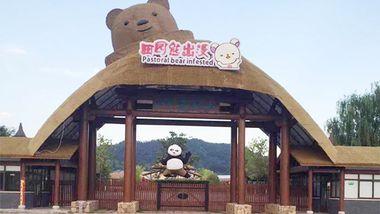 【递铺镇】山水灵峰田园熊出没乐园门票(成人票)-美团