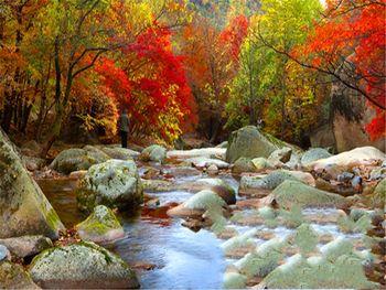 【沈阳出发】老边沟景区1日跟团游*摄影爱好者的天堂-美团