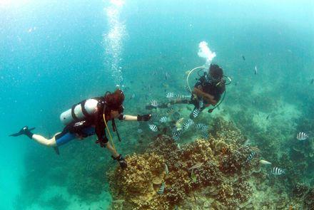 海口出发分界洲岛+大堡礁潜水纯玩一日游