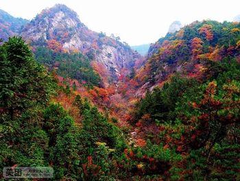 【合肥出发】明堂山、岳西彩虹瀑布、天悦湾温泉2日跟团游*家门口的玻璃栈道-美团