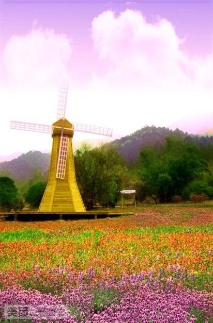 南丹山风景区位于三水南山镇(迳口华侨经济区)城区东1公里,导航仪请设