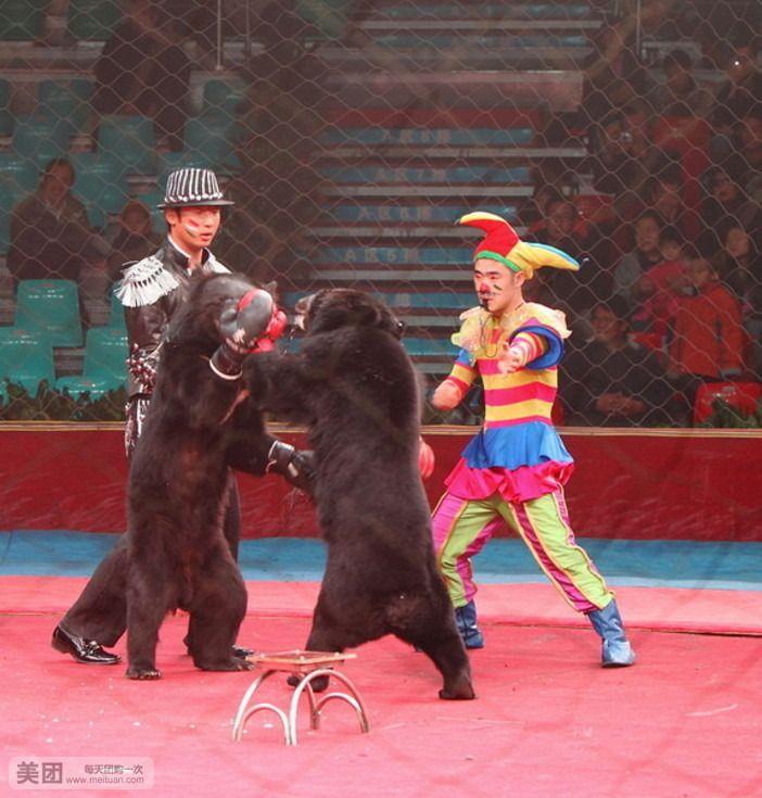 野生动物园杂技马戏大世界