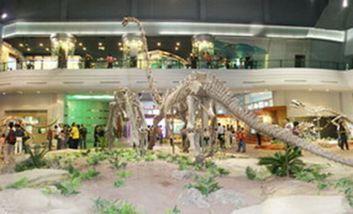 【大安区】自贡恐龙博物馆门票儿童/学生/老人票-美团
