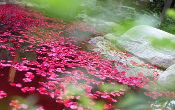 【宜良县】汤池热水河温泉门票+自助餐(亲子票1大2小)-美团