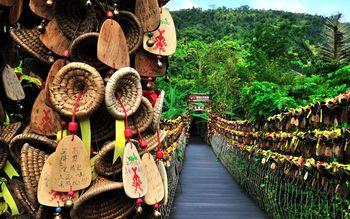 【保亭县】呀诺达雨林文化旅游区门票(成人票)-美团