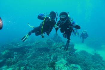 【湛山/太平角】琴海潜水俱乐部vip会所单次DSD潜水体验成人门票-美团