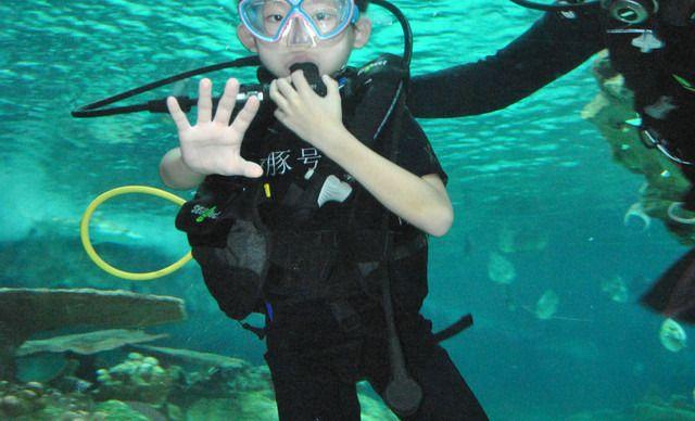儿童潜水体验套餐,提供免费wifi