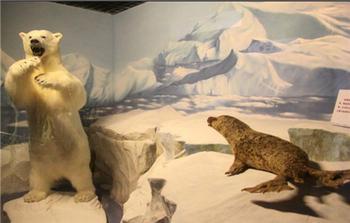 【滨海学院】青岛滨海学院世界动物标本艺术馆-美团