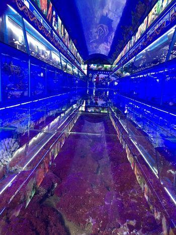 【万平口风景区】贝壳博物馆-美团