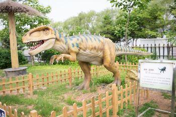 【浑南区】棋盘山恐龙欢乐谷-美团