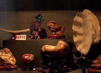 【莲前西路】惠和石文化园-美团