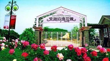 【温泉镇】宝趣玫瑰园门票(家庭票2大1小)-美团