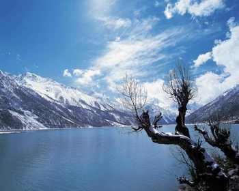【哈尔滨出发】北极村旅游区、中国北极点、北极沙洲等纯玩5日跟团游*漠河双卧5日游-美团