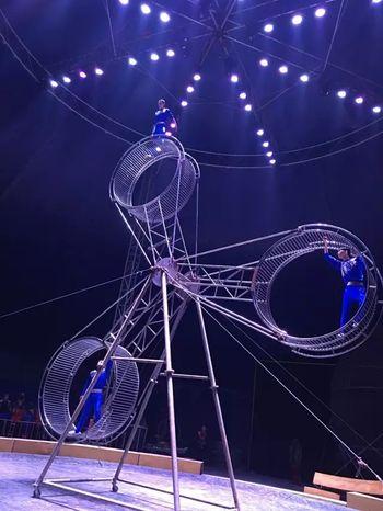 【渝北区】俄罗斯皇家马戏团-美团