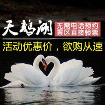 【岱岳区】天鹅湖景区-美团