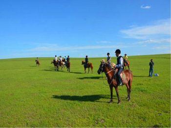 【呼和浩特出发】希拉穆仁草原、库布其沙漠2日跟团游*当草原遇上沙漠-美团