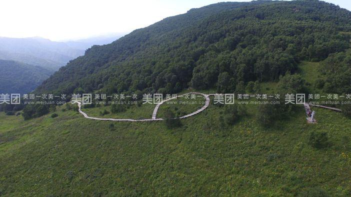 """茅荆坝森林公园                     """"茅荆坝原始森林谷是国家aaaa级"""