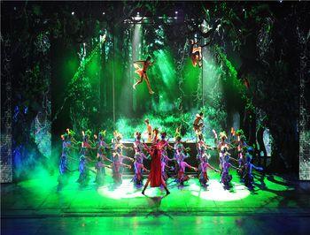 【宋城】杭州宋城景区门票+19:00贵宾席演出票成人票-美团