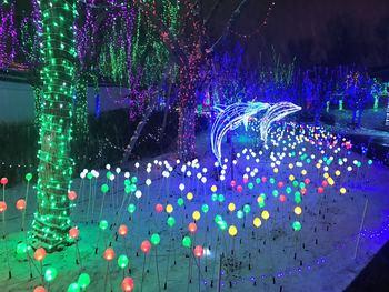 【城东】扬州水立方水上乐园光影岁月璀璨夜公园夜场门票(成人票)-美团