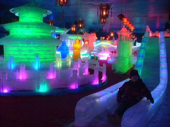 【保定出发】中北运河冰雕乐园、天津热带植物观光园、天津意大利风情旅游区纯玩1日跟团游*置身童话般的冰雪世界-美团