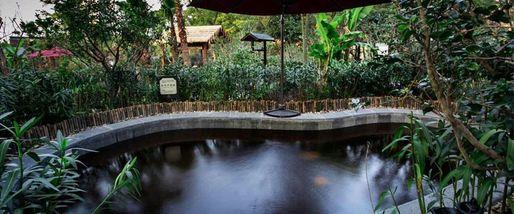 【其它】达蓬山温泉门票+达蓬山环湖乐园门票(成人票)-美团