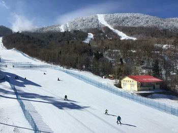 【亚布力滑雪旅游度假区】亚布力新体委滑雪场-美团