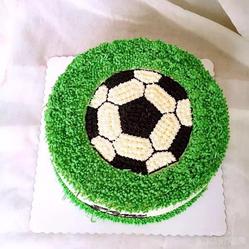 动物鲜奶油足球蛋糕图片