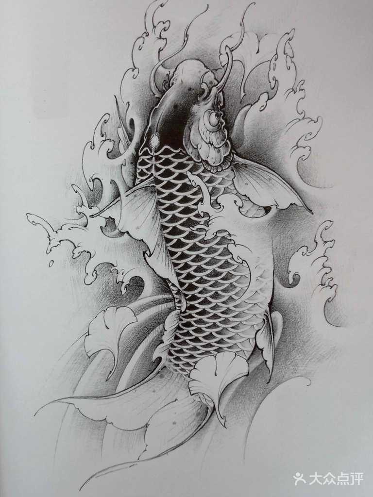 鲤鱼素描画法步骤图片