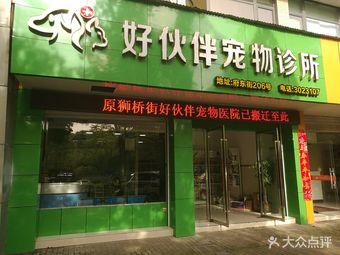 衢州宠物医院 衢州宠物医院宠物