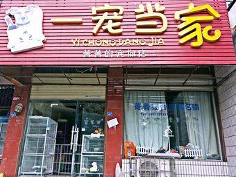 菁菁的宠物店