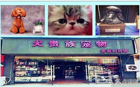 犬贵族宠物美容时尚馆-美团