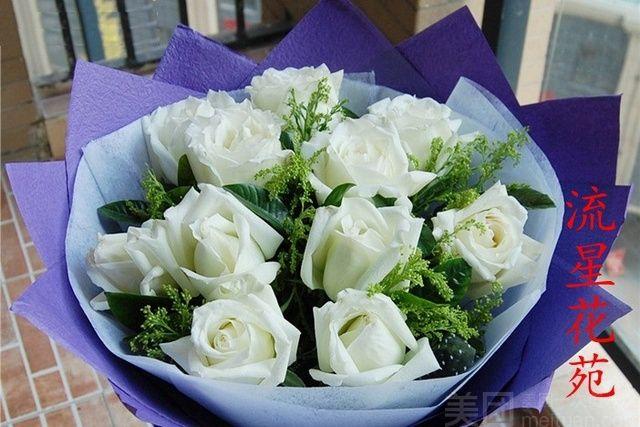 流星花苑-美团