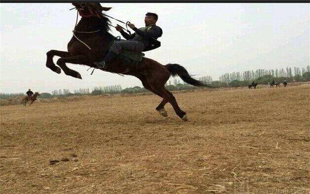郑州摩尔庄园_2012郑州摩尔庄园儿童剧生活服务郑州论坛