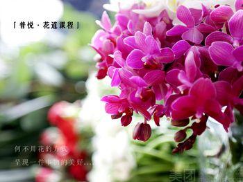 【北京】普悦茶艺-美团