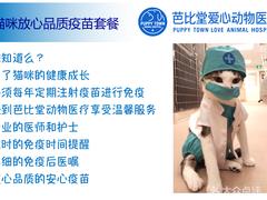 芭比堂爱心动物医院的图片