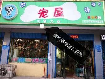 河洛犬业宠物店(菜市场店)
