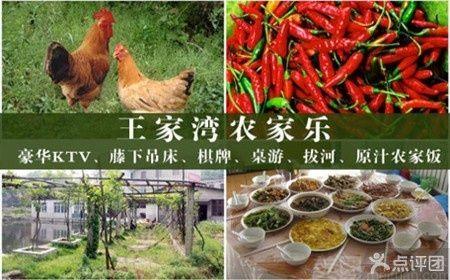 :长沙今日团购:【王家湾农家乐】自助套餐