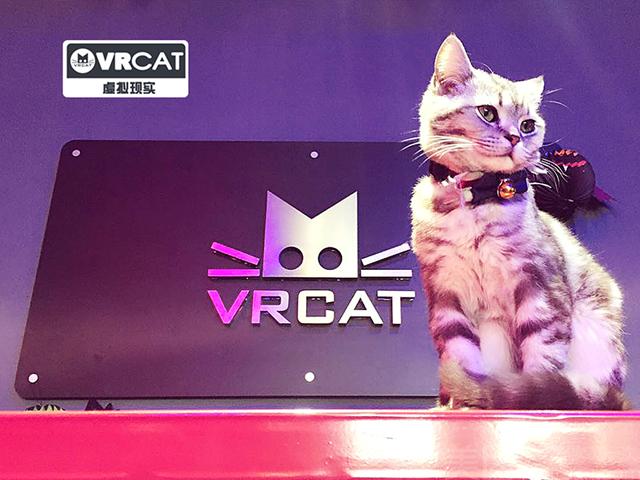 VR CAT主题虚拟现实俱乐部-美团